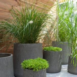 Pot De Jardin Quelle Matiere Choisir La Maison Carree Blog